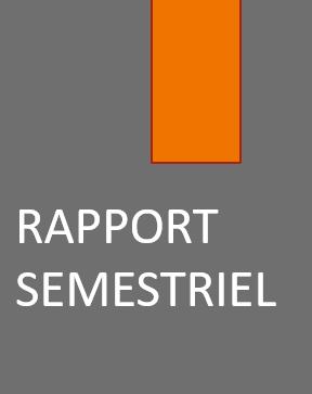 Rapport financier semestriel au 30 Juin 2020